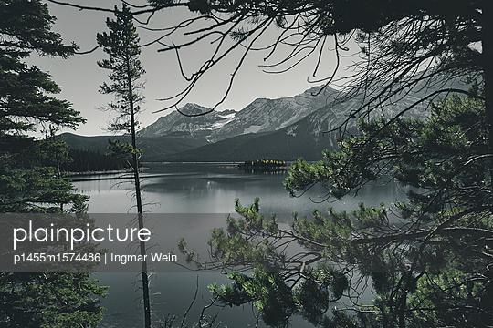p1455m1574486 by Ingmar Wein