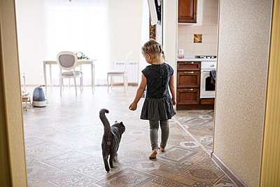 Girl walking with British Shorthair cat at home - p300m2198171 by Ekaterina Yakunina