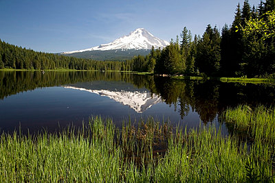 Snow capped mountain reflected in Trillium lake, Mount Hood National Forest, Oregon, United States of America - p4429491f by Design Pics