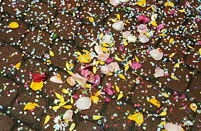 Konfetti und Blüten - p1750001 von Doris Drinkuth