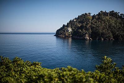 bay near portofino - p1007m1424567 by Tilby Vattard