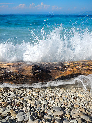 A wave splashing against a tree trunk on a pebbly beach in Greece. - p1433m1526057 by Wolf Kettler