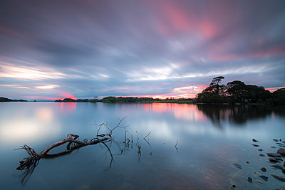 Lough Leane lake, Killarney National Park, County Kerry, Munster, Republic of Ireland, Europe - p871m2003496 by Roberto Moiola