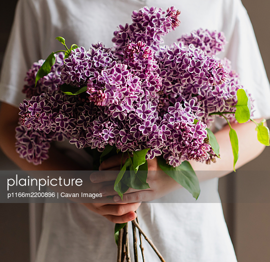 Cropped image of child's hands holding bouquet of lilac flowers. - p1166m2200896 by Cavan Images