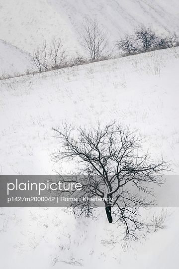 p1427m2000042 von Roman Kharlamov