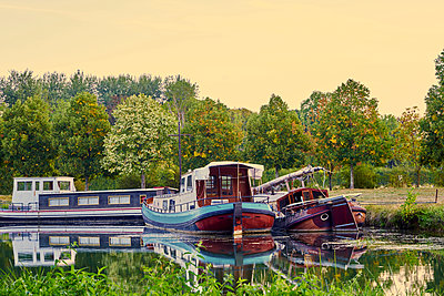 Three houseboats moored on the shore of canal - p1312m2269996 by Axel Killian