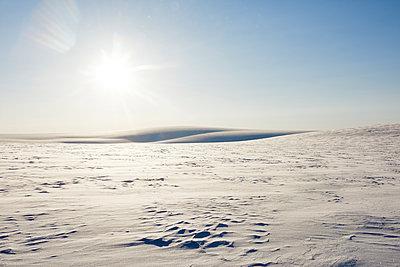 Winterlandschaft in Spitzbergen - p1203m1189796 von Bernd Schumacher