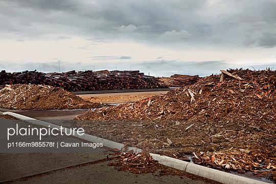 p1166m985578f von Cavan Images