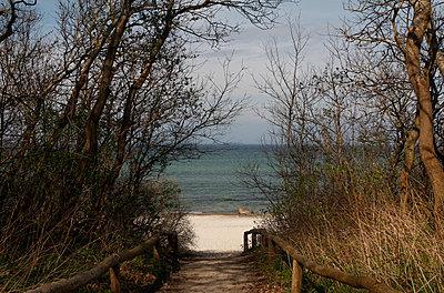 Path to the beach - p039m1511802 by Christine Höfelmeyer