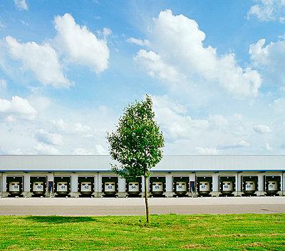 Tree in front of industrial garages - p42918743 by Mischa Keijser