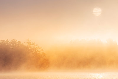 Morning sun and fog at Chandos Lake - p1065m982629 by KNSY Bande