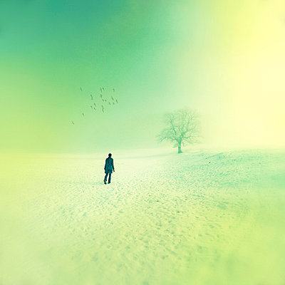 Woman dreaming - p8800034 by Claudia Below