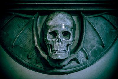 Skull - p1118m2143022 by Tarik Yaici