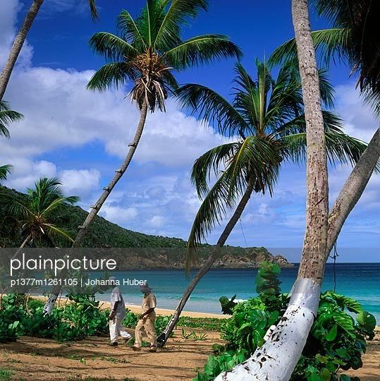 Tortola Island, Elizabeth Bay, Lambert Beach Resort, beach - p1377m1261105 by Johanna Huber