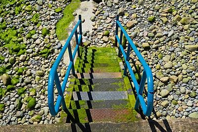 Ladder - p1082m2099682 by Daniel Allan