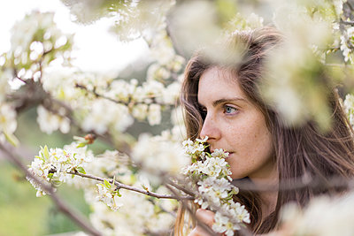Woman smelling white blossoms of fruit tree - p300m1581609 by VITTA GALLERY