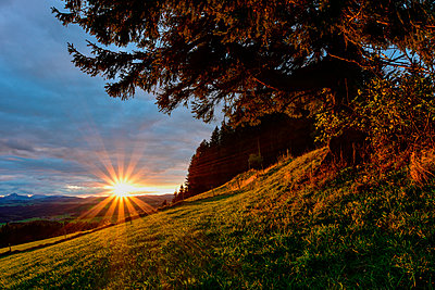 Germany, Bavaria, Allgaeu, sunrise at Auerberg - p300m977833f by Kontrastlicht