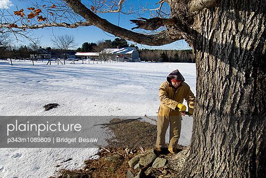 p343m1089809 von Bridget Besaw