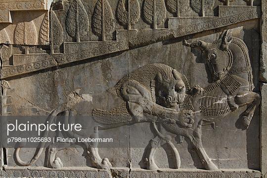 Relief in Persepolis - p798m1025693 von Florian Löbermann