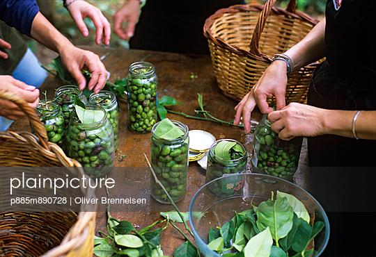 Pickling olives - p885m890728 by Oliver Brenneisen