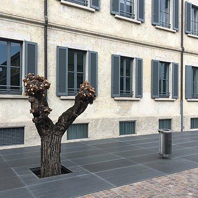 Milano - p083m2089531 von Thomas Lemmler