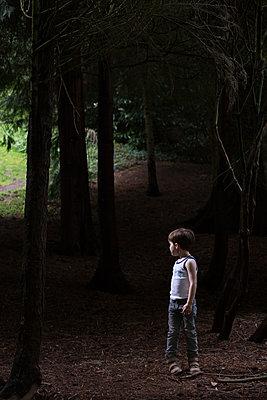 Kleiner Junge im Wald - p1308m2057159 von felice douglas