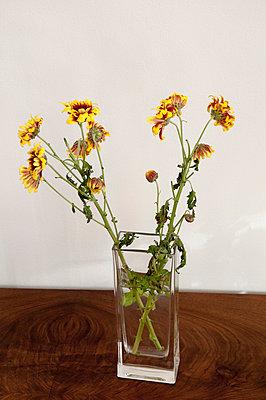 Blumenvase - p171m901044 von Rolau