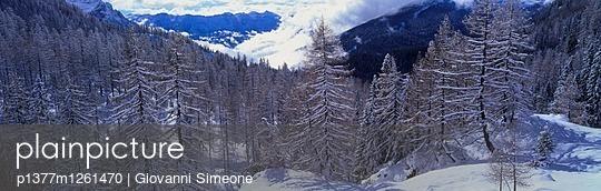 p1377m1261470 von Giovanni Simeone