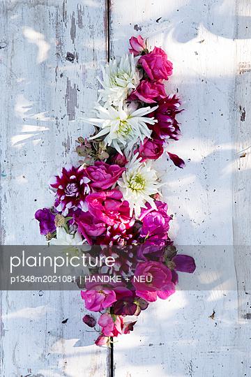 Herbstblumen - p1348m2021081 von HANDKE + NEU