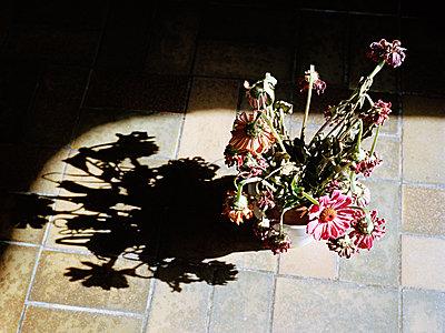 Vergessene Blumen - p1008m939783 von Valerie Schmidt