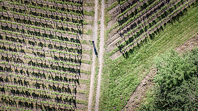 Aerial view of a french vineyard - p1402m2280268 by Jerome Paressant