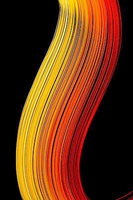p451m2054883 by Anja Weber-Decker