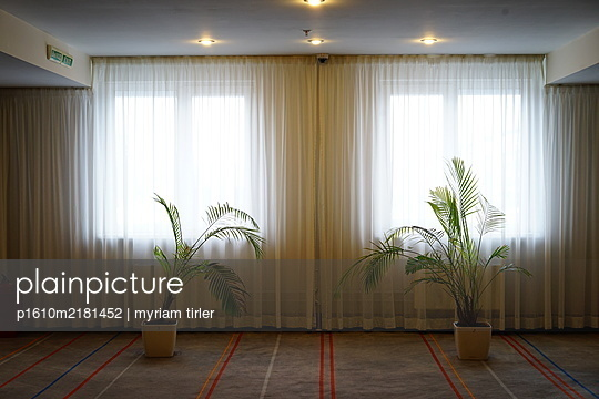 Two plants in a hotel lobby - p1610m2181452 by myriam tirler