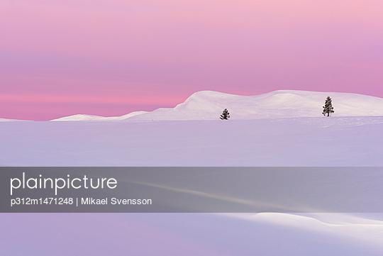p312m1471248 von Mikael Svensson