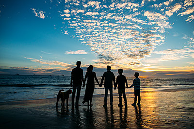 Rear view of family holding hands while standing by dog against cloudy sky at beach during sunset - p1166m1546858 by Cavan Images