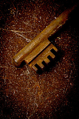 Unlocking - p451m1108716 by Anja Weber-Decker