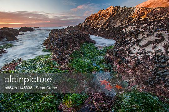 p884m1145338 von Sean Crane