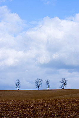 Agriculture - p2480826 by BY