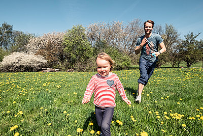 Little girl and her father running on a meadow at springtime - p300m2167597 by Wilfried Feder