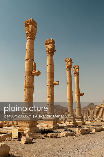 Ruinen der Oasenstadt und UNESCO-Weltkulturerbe Palmyra/Tadmor nahe Damaskus, Syrien - p1493m2063571 von Alexander Mertsch