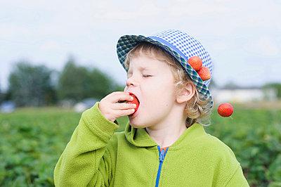 Boy eating strawberry in field - p300m718926f by Jana Mänz