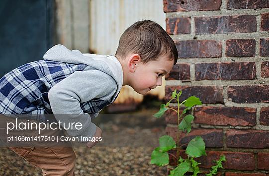 p1166m1417510 von Cavan Images