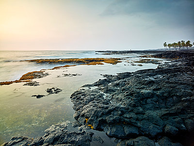 Scenic view of Kealakekua Bay against sky during sunset - p300m2131785 by Christian Vorhofer