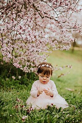Baby girl sitting on grass near cherry tree in springtime - p300m2265676 by Gala Martínez López