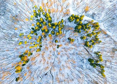 Germany, Baden Wurttemberg, Aerial view of Swabian Forest in winter - p300m2268134 by Stefan Schurr