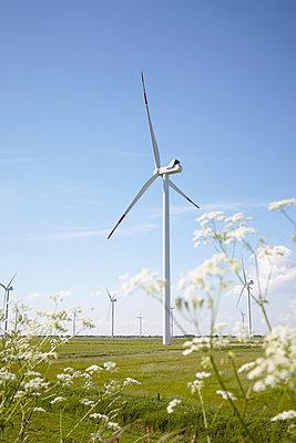 Nachhaltigkeit - p464m912854 von Elektrons 08