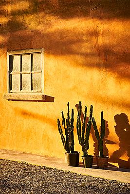 House facade - p968m2021361 by roberto pastrovicchio