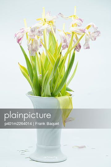 Withered bouquet of tulips - p401m2264014 by Frank Baquet