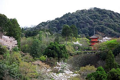 Kiyomizu-dera Tempel - p664m1132597 von Yom Lam