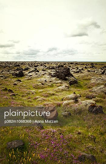 Lava field - p382m1068368 by Anna Matzen